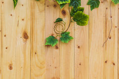 Wood board with green leaf Royalty Free Stock Images