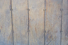 Wood board sheet texture Stock Image