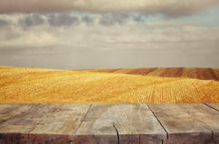 Wood board table in front of field of wheat on sunset light. Ready for product display montages Royalty Free Stock Photography