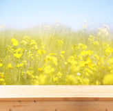 Wood board table in front of summer landscape with double exposure of flower field bloom Stock Photos