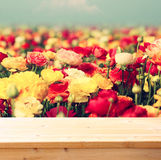 Wood board table in front of summer landscape of field with many flowers Stock Images