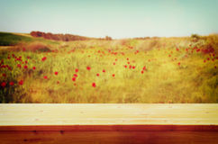 Wood board table in front of summer landscape of field with many flowers . background is blurred Royalty Free Stock Images