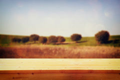 Wood board table in front of summer landscape of field with trees. background is blurred royalty free stock images