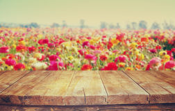 Wood board table in front of summer landscape of flower field bloom Stock Photography