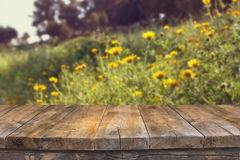 Wood board table in front of summer landscape of flower field bloom Royalty Free Stock Image