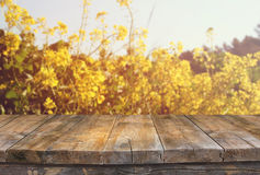 Wood board table in front of summer landscape of flower field bloom Stock Photos