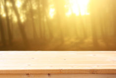 Wood boards and nature backgrounds of summer light among trees Royalty Free Stock Photography