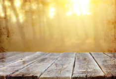 Wood boards and nature backgrounds of summer light among trees. royalty free stock image