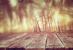 Wood boards and summer light among trees. textured image. filtered. royalty free stock images