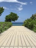 Boardwalk Leading to the Ocean Vertical View stock photo