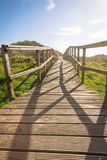 Wood boardwalk in sunny day on fields background Royalty Free Stock Photos