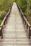 Wood Boardwalks Royalty Free Stock Photography