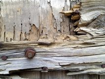 Wood and bolt textures. Photo of old wood, bolt and nail Royalty Free Stock Photography