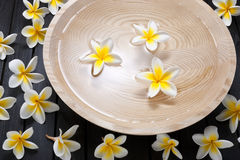 Spa Flowers Water Treatment. A wood bowl filled with water and frangipani flowers on a dark wood background. Can be paired with similar image No. 30168736 stock images
