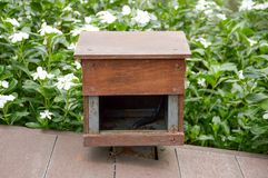 Wood box in nature garden Royalty Free Stock Images