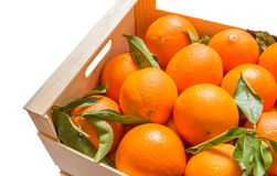Wood box of valencian oranges on white background Stock Image