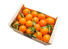 Wood box of valencian oranges on white background Royalty Free Stock Photography