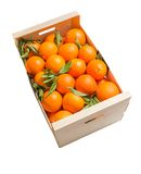 Wood box of valencian oranges on white background Stock Photography