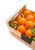 Wood box of valencian oranges on white background Stock Photos