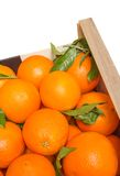 Wood box of valencian oranges on white background Royalty Free Stock Photos