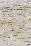 Wood brädetextur Royaltyfri Foto