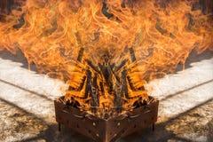 Wood bränning för grillfest Arkivbild