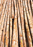 Wood bracing. Many wood bracing. It is used in construction Royalty Free Stock Image