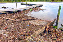 Wood Branch Debris and Trash after a River Flood Royalty Free Stock Images