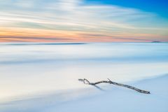 Wood branch on a white beach on twilight sunset Stock Images
