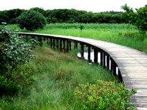 Wood Bridge. A curved wooden bridge with many grasses Stock Photography
