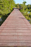 Wood bridge. Wooden bridge for walking and nature study Royalty Free Stock Photography