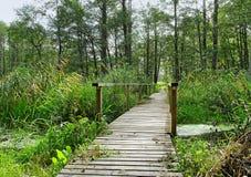 Wood bridge. Royalty Free Stock Images