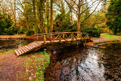 Free Wood Bridge Royalty Free Stock Image - 67895216
