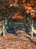 Wood bridge in autumn colors and dreamy atmosphere Stock Photos