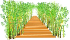 Wood bridge and bamboo wall Stock Image
