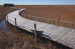 Wood Bridge in the bank of lake Royalty Free Stock Photo