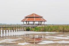 Wood Bridge Bua marsh Stock Photos