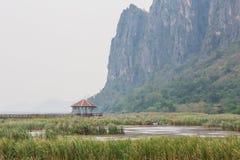 Wood Bridge Bua marsh. Wood Bridge at Sam-Roy-Yod Nation park ,Prachuapkhirikhan Province,South of Thailand Royalty Free Stock Image