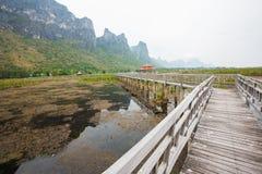 Wood Bridge Bua marsh. Wood Bridge at Sam-Roy-Yod Nation park ,Prachuapkhirikhan Province,South of Thailand Stock Photo