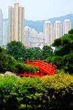 Wood bridge in the chinese  garden. Red wood bridge in the chinese garden setting contrasts with the modern skyscrapers on the hill behind Stock Image