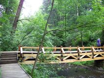 Wood bridge clear creek forest Royalty Free Stock Photos