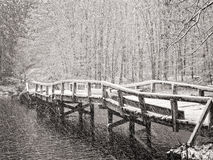 Wood bridge covered in snow Stock Photography