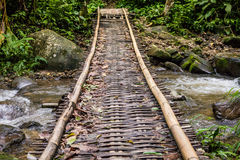 Wood bridge cross river Stock Photography