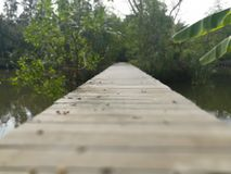 Wood bridge crossing water stream. Simple walkway made of wooden path royalty free stock photography