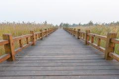 Wood bridge  in field Stock Image