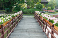 Wood bridge and flower Royalty Free Stock Images