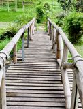 Wood bridge in forest. Stock Photography