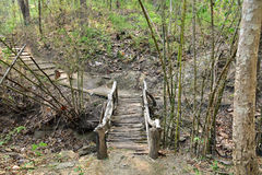 Wood bridge. In the forest Royalty Free Stock Images