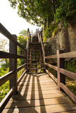 The wood bridge in the forest. For the tourism stock photography