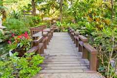 Wood bridge in the garden. Wood bridge and green leaf in the garden royalty free stock image